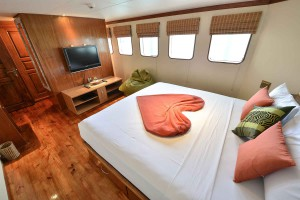 Carpe Diem Suite cabin
