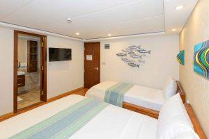 Carpe Novo Standard cabin