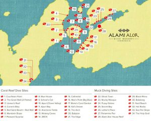 Alami Alor dive site map